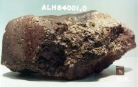De steen waar 't om draait, ALH 84001