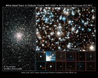 Onderzochte witte dwergen in NGC 6397