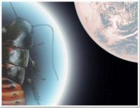 Kakkerlakken in Space!