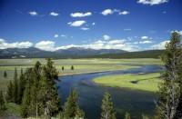 Yellowstonepark