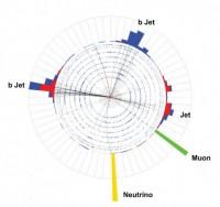 Het losse top-quark