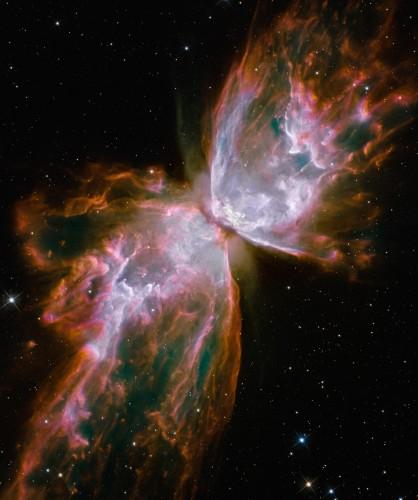 NGC 6302 door Hubble gefotografeerd