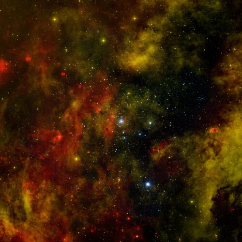 A star cluster about 5,000 light years from Earth that contains many massive young stars.