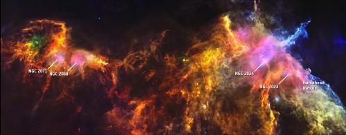 Herschel_paardenkopnevel