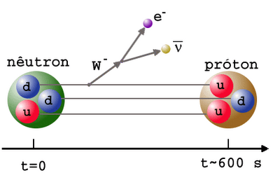 BB nucleo 11 neutron decay