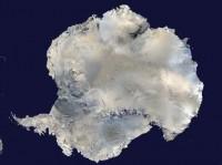 De geschiedenis van Antarctica – een verhaal vol dino's, pinguins en tropisch weer
