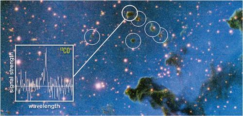 Globulettes in the Rosette Nebula