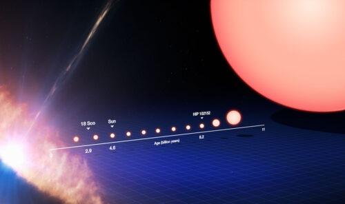 levensloop zonachtige sterren