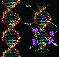 DNA-schade