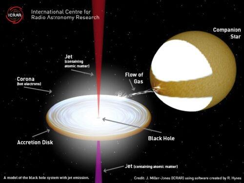 Model van zwarte gat dat normale atomen in zijn jets bevat (credit: J. Miller-Jones (ICRAR)).