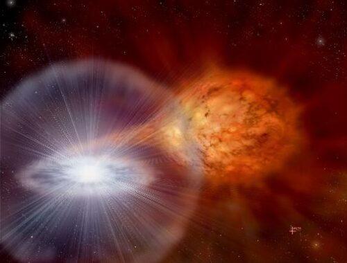 white dwarf nova