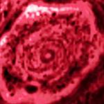 Mysterie van Saturnus bizarre hexagoon is wellicht opgelost