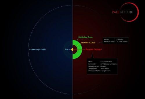 Proxima Centauri en zijn planeet vergeleken met ons zonnestelsel