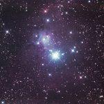 ijskouwe Kerstboom…NGC 2264